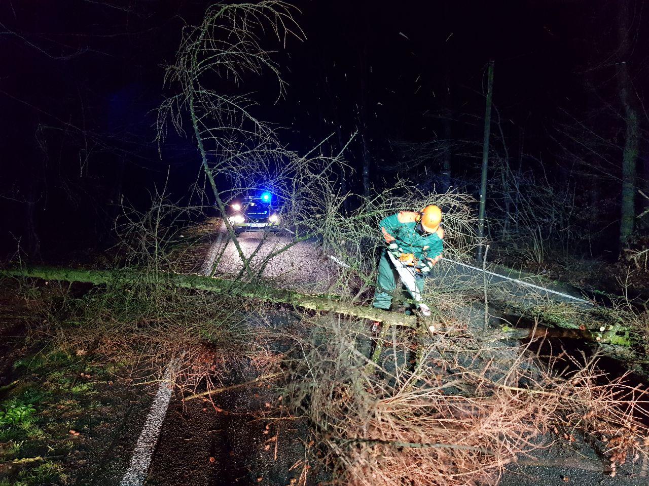 Technische Hilfe - Baum auf Strasse